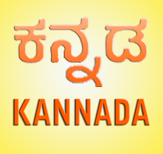 Open Dosa Reporters Attempt Kannada