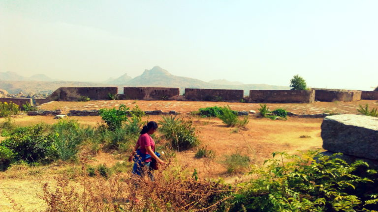In Search of a Spring amidst the Honey Hills